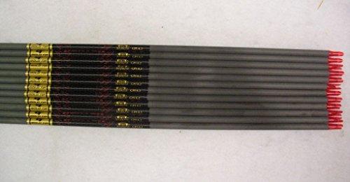 Gold Tip Hunter 3555500 Carbon Arrow Shafts 2Dz24 Shafts