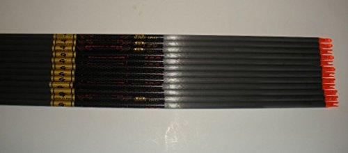 Gold Tip Hunter 5575400 Carbon Arrow Shafts 2Dz24 Shafts