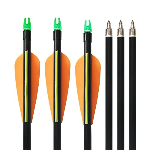 10Pcs 33 Fiberglass Hunting Arrows with Replaceable Screw-in Point and Explosion Proof Tail Colorful 3 Fletches Target Practice Arrow for Compound and Recurve Bow Outdoor Game Gift