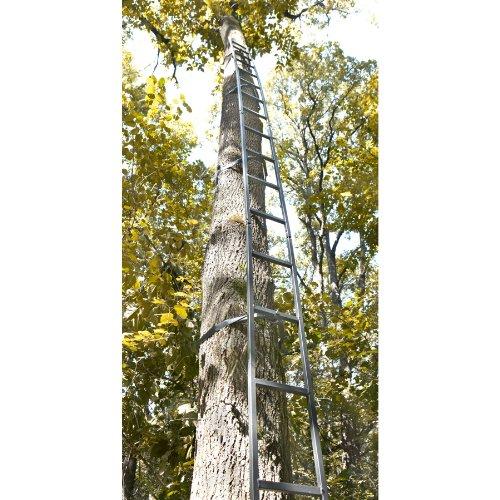 Guide Gear 20 Tree Ladder