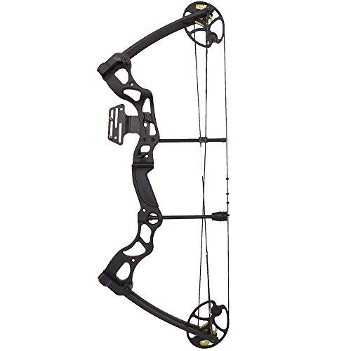 Wizard Archery 70 Lbs 30 Compound Bow - Black