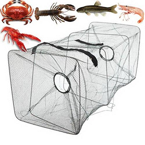 Foldable Fishing Bait Trap Dip Net Cage Crab Fish Minnow Crawdad Shrimp