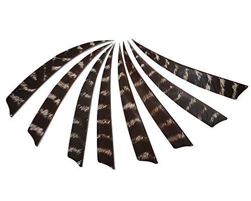I-Sport 5 Natural Feathers Archery Arrow Fletch Fletching-right Wing-peltate Shape 3 Dozen