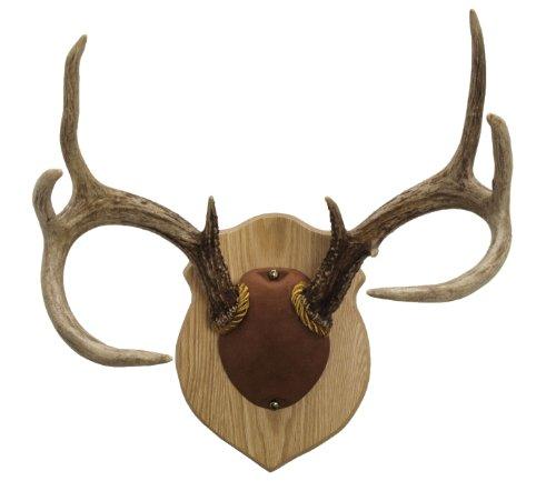 Walnut Hollow Country Antler Mount Display Kit Oak
