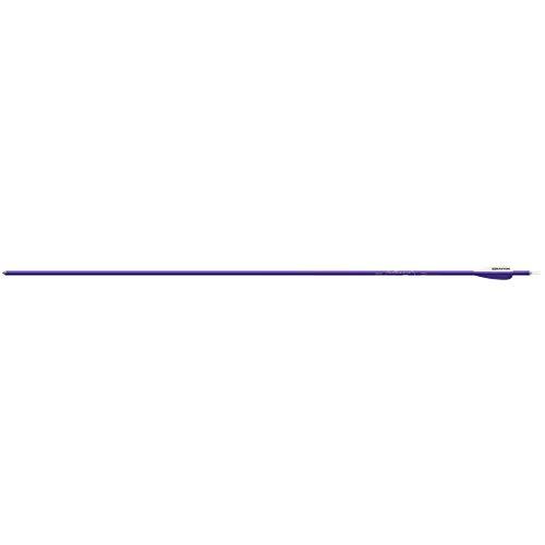 Easton Genesis V2 Arrows with 3 Vanes 6 Pack 1820 Purple