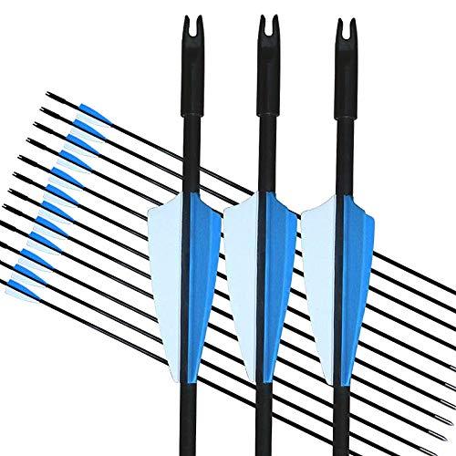 GPP Archery Beginners First Arrows 30 Fiberglass Target Archery Arrows - 12 Pack