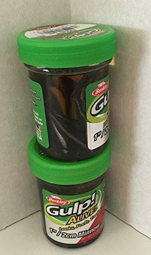 Gulp Alive Gulp Bait 1 INCH Black SHAD Minnow 2 jar Bundle Berkley Perch Minnows ice Fishing Bait Panfish Minnows