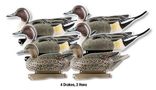 Greenhead Gear Life-Size Duck DecoyPintails12 Dozen
