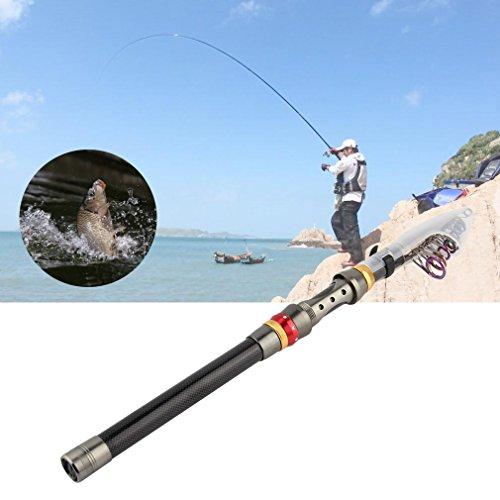 Kingsea Super Light Carbon Telescopic Pole Saltwater Casting Sea Fishing Rods