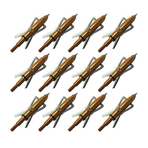 12pk Two Blades 100 Grain Cutting Diameter 2 Inches Archery Hunting Golden Broadheads