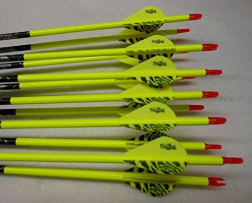 Gold Tip XT Hunter 5575400 Carbon Arrows wBlazer Vanes Wraps 1Dz