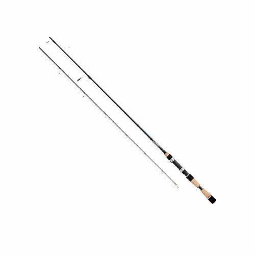 Daiwa STIN70MXS Saltist Spinning Rod 7
